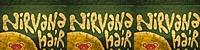NIRVANA (ニルヴァーナ) ロゴ